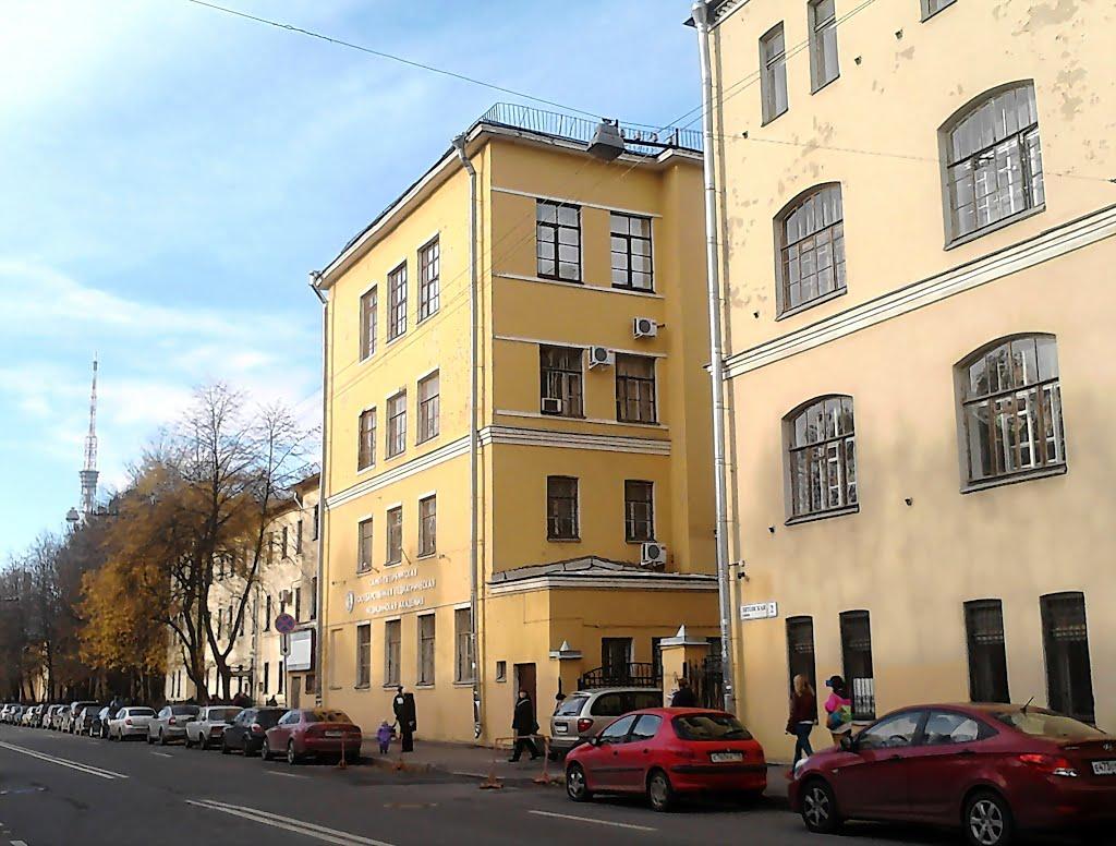 Санкт-петербургская педиатрическая медицинская академия отзывы анализ крови ahv
